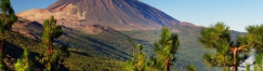 ПРОМО! Канарските острови - Тенерифе 2019